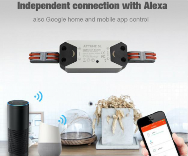 Smart Switch works with Google Home and Alexa